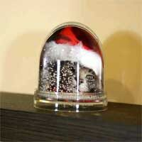 palla di neve vetro personalizzata con foto