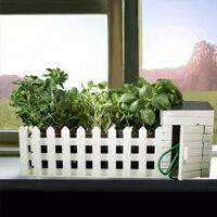 Mini giardino da interni