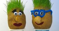 Teste con capelli in erba