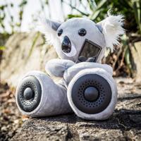 Peluche Koala con casse