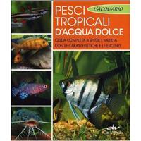 Idee regalo per trovare i regali perfetti senza impazzire for Pesci tropicali acqua dolce nomi