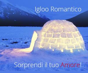 Prova un'esperienza davvero straordinaria e trascorrete una notte in un igloo romantico! Una notte di tempo per afferrare le stelle e regalarle al vostro tesoro!