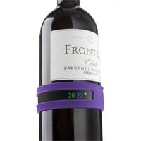 Termometro da bottiglia