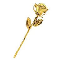 Rosa d'oro 24 carati