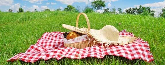 picnic sorpresa