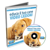 Idee regalo originali 200 regali originali per ogni for Educazione cane