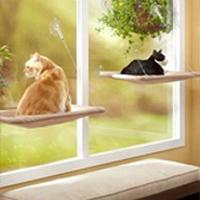Lettino per finestra per gatti