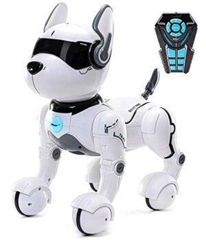 Cucciolo Robotico