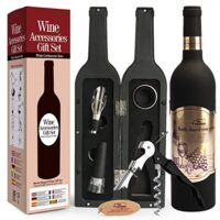 Kit accessori per vino 5 pezzi