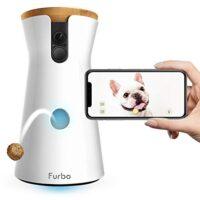 Videocamera per Cani